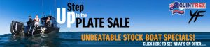 STEP UP TO THE PLATE SALE